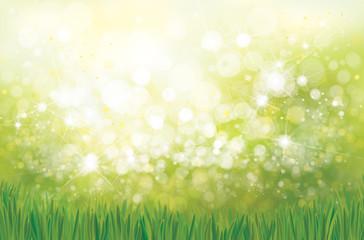 Vector green grass  bokeh nature background.