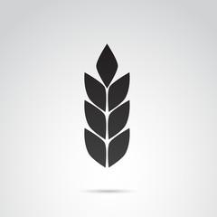 Wheat vector icon.