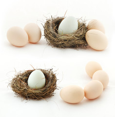 Composition with eggs and the nest