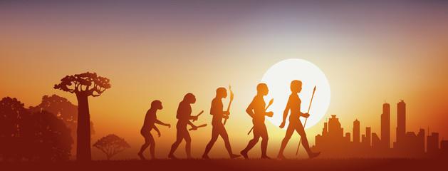évolution - intelligence, humanité, espèce, Forêt - Ville - Coucher de soleil