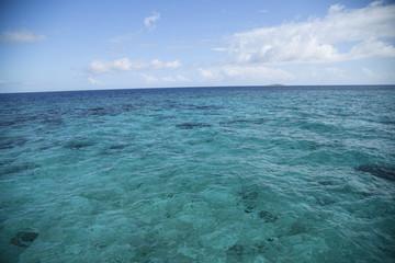 海 モルディブ 浅瀬 サンゴ礁