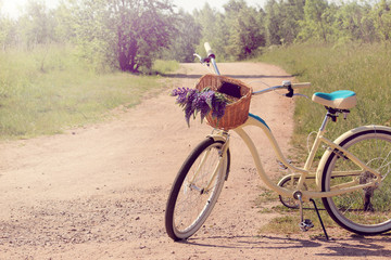 floral walks in the fresh air/ Rural road with a bicycle and a basket of wildflowers