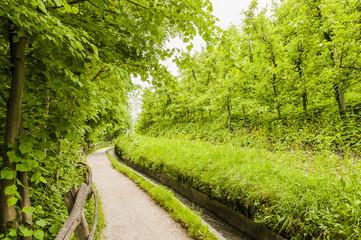 Marling, Dorf, Algund, Marlinger Waalweg, Waalweg, Wanderweg, Obstbäume, Vinschgau, Obstplantagen, Frühling, Südtirol, Italien