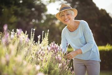 Happy senior woman standing in backyard