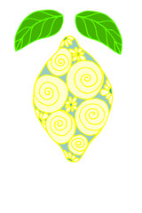 Drawing Doodle lemon pattern on a white background