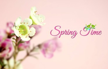 Spring picture with flowers
