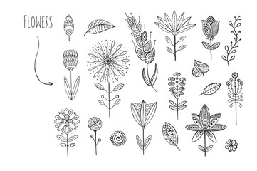 Lovely hand drawn floral elements