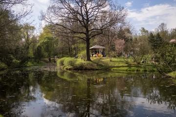 Весна в ботаническом саду.Spring in the Botanical Garden