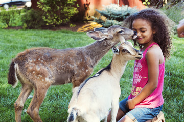 Fawn licking girl kneeling by kid goat on field
