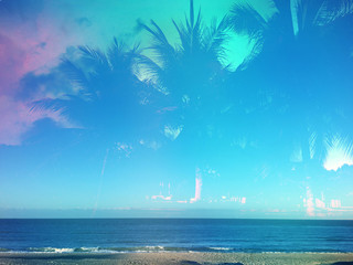 Beach and palm tree background with copy space