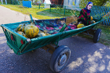 Fruits and vegetables on a cart. Fair in the village