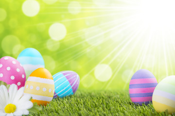 Decorated Easter eggs in the grass with a green background