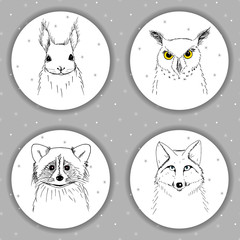 Round white labels with cute animal faces squirrel, fox, raccoon, owl