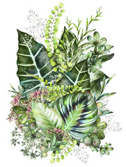 tropical composition. Watercolor illustration isolated on white background. Exotic leaves and herbs