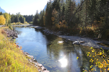 Wall Mural - Beautiful Mountain Stream with Sun Reflection and Fall Colors