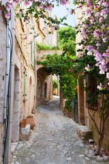beautiful old town stone street of Provence at spring day, France