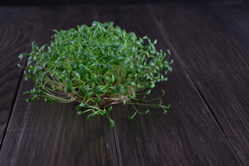 Fresh cress on wooden table. Selective focus