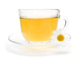 Camomile tea with chamomile flower isolated on white
