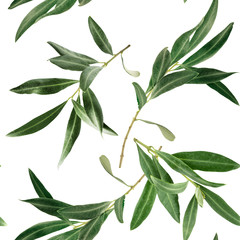 Seamless pattern with olive tree branches on white