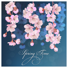 Springtime background or greeting card with cherry flowers. Handmade drawing vector illustration