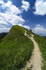 Mala Fatra mountain, Slovakia, Europe