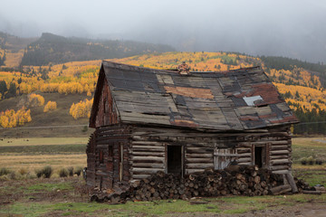 Rustic Abandoned Cabin
