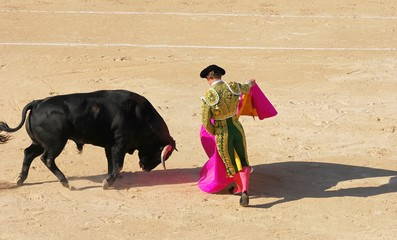 Wall Murals Bullfighting corrida 1
