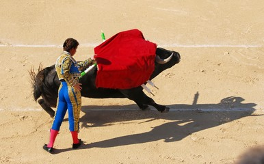 Self adhesive Wall Murals Bullfighting corrida 1