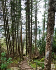 Killarney Nationalpark in Irland