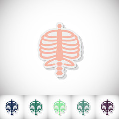 Human rib cage. Flat sticker with shadow on white background