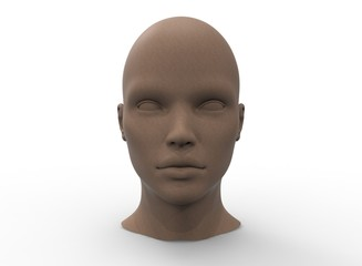3d illustration of human head. white background isolated. icon for game web.