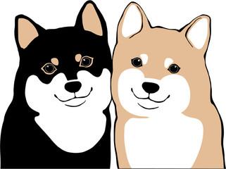 柴犬 黒柴と茶芝の子犬