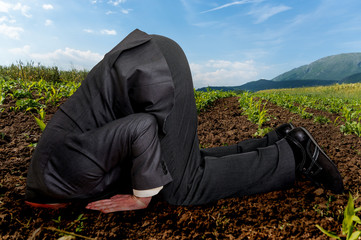 Businessman burying his head in the ground