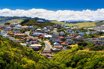 Printed kitchen splashbacks New Zealand beautiful neigborhood with houses. Location: New Zealand, capital city Wellington