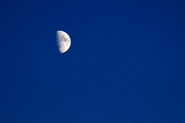 mezza luna lucente nel cielo blu della sera