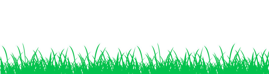 Grass on white background - vector