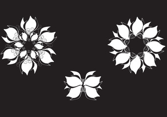flawer white