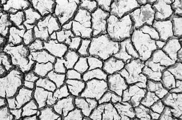 arid ground texture