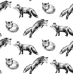 seamless pattern with hand drawn foxes