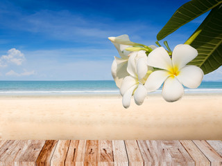 Photo sur Plexiglas Frangipanni Summer beach concept background with plumeria flower and wood plank