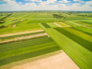 Krajobraz wiejski i pola widziane z lotu ptaka. Pola uprawne rozciągające się po horyzont.