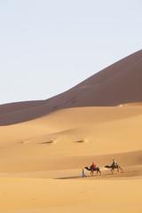 chameaux dans le désert de sable