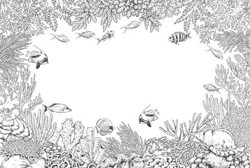 Underwater Background with Corals  and Fishes
