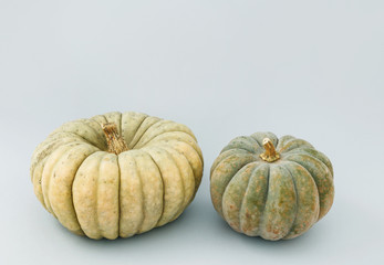 Two big pumpkins isolated on grey background