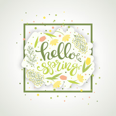 Hello spring greeting card vector