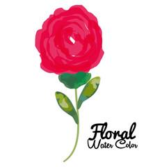 floral water color decoration vector illustration design
