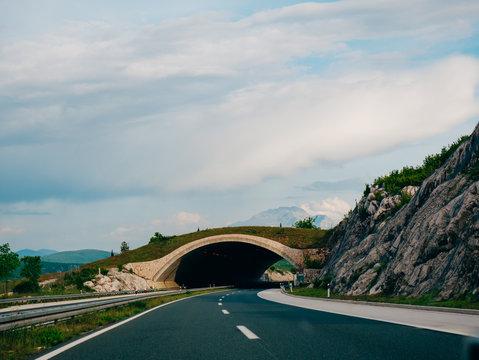 Bridge for animals on the road. Green bridge over the road. Safety bridge to go over the motorway animals. Motorway in Croatia.