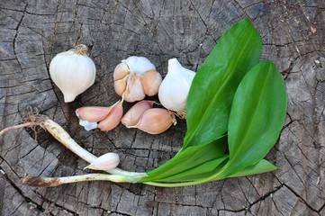 Wild garlic ramson or bear garlic with garlic bulb and garlic cloves on wooden background