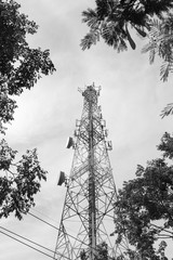 Tower for receiving data in leaves - black and white