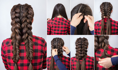 hairstyle two braids tutorial